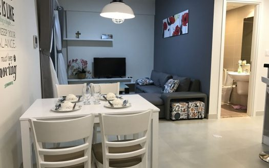Apartment for rent in Masteri Thao Dien, full furniture, 2Brs, $900, City View
